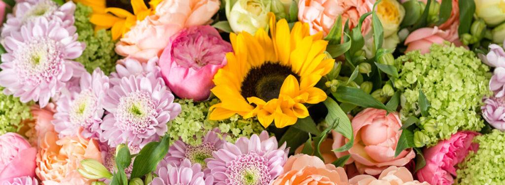 flowersinhollywood